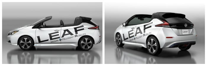 Newsletter-week-21-Cabriolet-Leaf