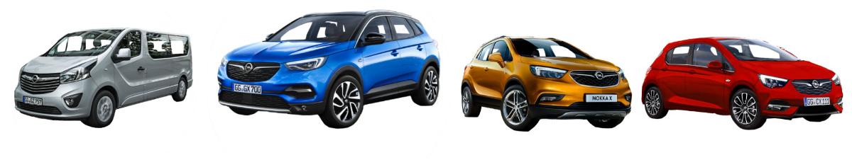 Opel-EVs-pre-order-opens-Top-5-EV-news-Week-49-2018-wattev2buy