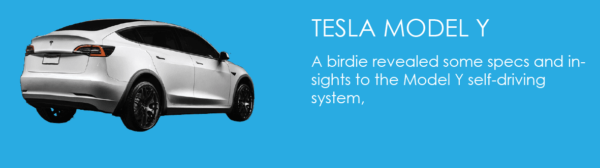 A birdie revealed some specs and insights to the Model Y self-driving system,